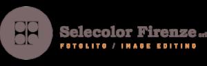 logo_footer2